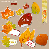 Ventas del otoño Fotografía de archivo libre de regalías