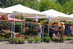Vente d'exposition des fleurs Photographie stock libre de droits