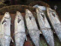 Vente de fruits de mer de bord de la mer Photos stock