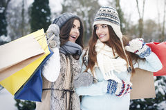 Vente de l'hiver Photo libre de droits