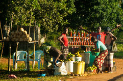 Vente de la nourriture dans la route nationale mozambicaine Photographie stock libre de droits