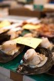 Vente de mollusques et crustacés image libre de droits