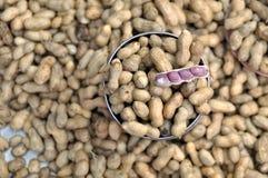 Vente des arachides bouillies Image libre de droits
