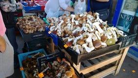 Vente des champignons au marché photographie stock libre de droits