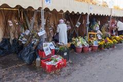 Vente des jeunes plantes au marché traditionnel d'agriculteurs Photographie stock libre de droits
