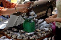 Vente des poissons Image libre de droits