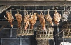 Vente des poulets morts sur le marché image libre de droits