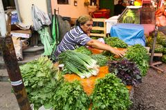 Vente des produits agricoles sur le marché central de nourriture Image libre de droits