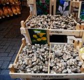 Vente des tulipes et des graines sur un marché de fleur d'Amsterdam, entraves traditionnelles à l'arrière-plan images stock