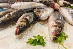 Vente du poisson frais, poissons sur la glace sur la fin de compteur  Photo stock