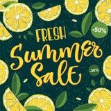 Vente fraîche d'été - conception colorée lumineuse de calligraphie illustration stock