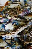 Vente fra?che de crabe au march? photographie stock