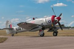 Venter Sea Fury fb-11 Stock Foto