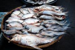 Ventes de poissons sur le marché local photographie stock