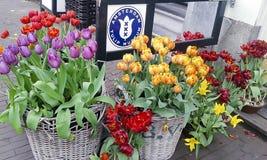Ventes et musée de tulipes d'Amsterdam photos stock