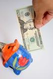 Venti dollaro e piggy Immagini Stock