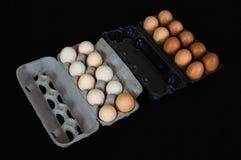 Venti uova del pollo in cartone e scatole di plastica, isolati sul fondo nero della stuoia immagini stock libere da diritti