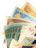 Ventilador do dinheiro Fotos de Stock