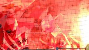 Ventiladores de futebol que comemoram no estádio video estoque