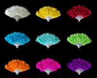 Ventiladores de la pluma Fotos de archivo libres de regalías