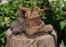 Ventilating hiking boots on a trunk Stock Photos