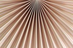 Ventilator van roze Stock Foto's