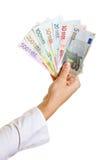Ventilatore della holding della mano fatto di euro documento Fotografia Stock