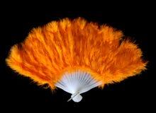 Ventilatore della piuma Fotografia Stock