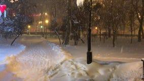 Ventisca de la nieve en el parque almacen de video