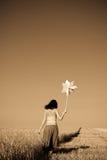 vento del frumento della turbina della ragazza del campo Immagini Stock