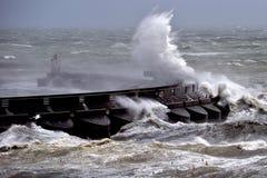 Vento della forza della tempesta fotografia stock libera da diritti