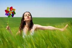 Vento do verão Fotos de Stock Royalty Free