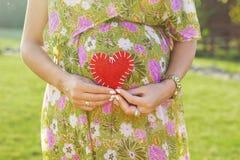 Ventre de symbole de femme enceinte et de coeur dehors Photo libre de droits