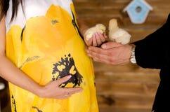 Ventre en gros plan de couples enceintes, poulet tenu dans la main Photos libres de droits