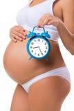 Ventre enceinte avec le réveil Image conceptuelle de grossesse heureuse Photos stock