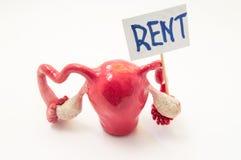 Ventre para o commodification do aluguel da foto do ventre ou do conceito da gravidez do surrogacy a forma 3D anatômica do útero  Foto de Stock