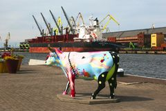 Ventspils, Latvia - ‎August 11, 2018: One of many cows on the. Streets of Ventspils stock photos