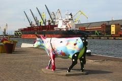 Ventspils, Letland - August 11, 2018: Één van vele koeien op stock foto's
