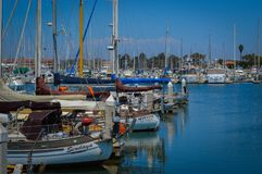 Ventura Harbor With Sailboats and Blue Sky royalty free stock images