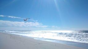 Ventura plaża 2015 zdjęcie stock