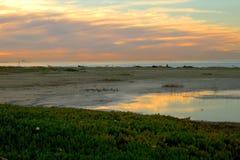 Ventura, spiaggia di CA al tramonto Fotografia Stock Libera da Diritti
