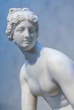 Venus foto de archivo