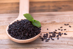 Venus black rice. And fresh mint, in a spoon of wood and with wood in background Stock Photography