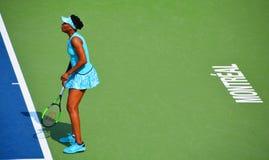 Venus Ebony Starr Williams fotografia de stock