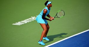 Venus Ebony Starr Williams images libres de droits