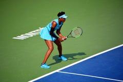 Venus Ebony Starr Williams imagem de stock royalty free