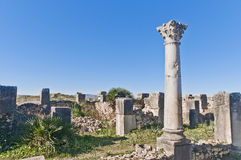 Venus Entourage house at Volubilis, Morocco Royalty Free Stock Photo