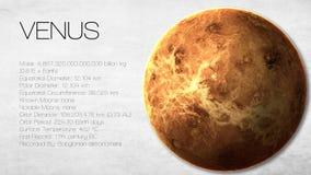 Venus - hög upplösning Infographic framlägger en Arkivfoto