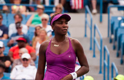 Venus 007. Mason, Ohio - August 17, 2015: Venus Williams at the Western and Southern Open in Mason, Ohio, on August 17, 2015 Stock Photography