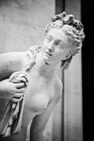 Venus Royalty Free Stock Images